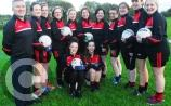 Insurance concerns for Leitrim Gaelic4Mothers & Others groups