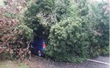 Gardai advise motorists to be aware of possible obstructions on the road in Leitrim in the wake of Storm Gareth