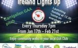 Watch| Seamus O'Rourke and David Rawle launch 'Ireland Lights Up' at Carrigallen GAA