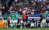 Ireland's report card after a disappointing Rugby World Cup