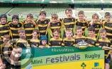 Carrick Rugby Club registration nights