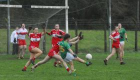 Gallery | Leitrim ladies suffered defeat at the hands of Louth in Cloone