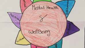 More Leitrim entries for Leitrim's Health is Wealth Poster competition