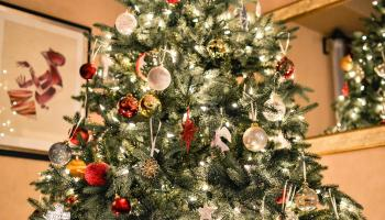 Apparently most of us aren't putting up the Christmas tree until the 8th!