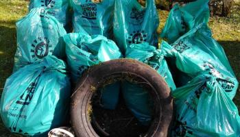 Over 600 Leitrim volunteers joined the National Spring Clean 2021