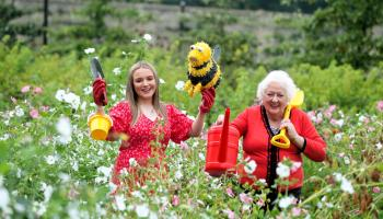Gaisce – The President's Award calls on the Leitrim public to plant a bulb to protect our bees