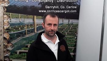 Fancy eating Irish snails at the Ploughing? Gaelic Escargot, Eoin Jenkinson, explains what they taste like