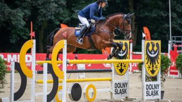 Prize-winning Leitrim horse going for gold at Tokyo Olympics