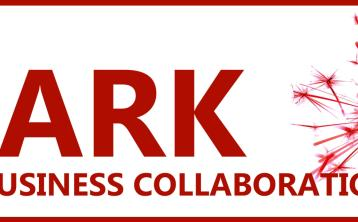 Leitrim's Spark Programme is looking for businesses to get involved in 2019