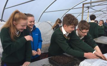 Climate Action Days in Lough Allen College
