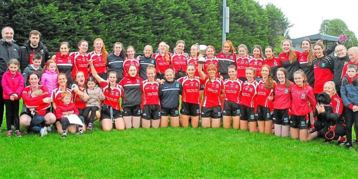Brilliant Dromahair storm to comprehensive win over St Mary's Kiltoghert - GALLERY