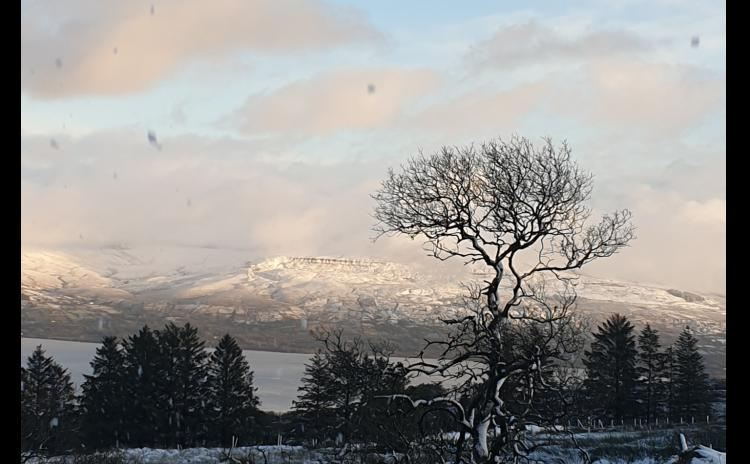 Gallery: Leitrim in the snow