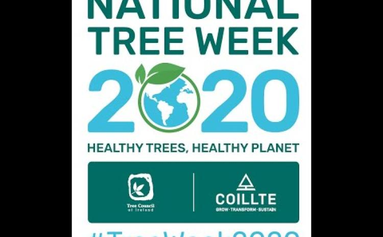 Coillte and the Tree Council are urging people in Co Leitrim to register events for National Tree Week 2020