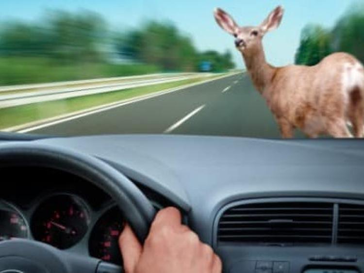 Car Accident Leitrim