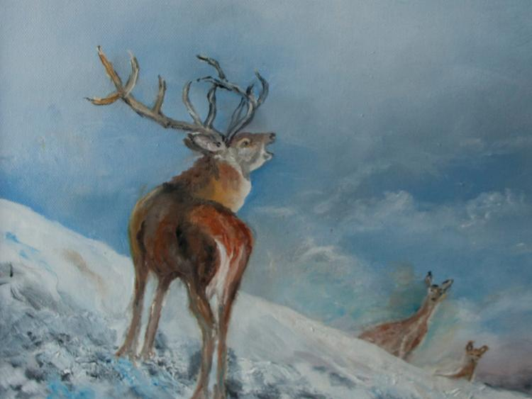 Christmas Show at Solas Gallery, Ballinamore - Leitrim Observer