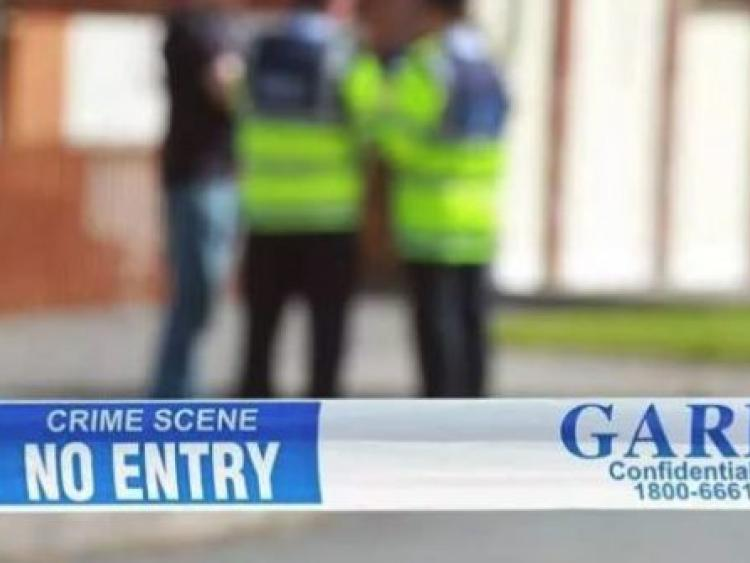 Dublin: Bodies of 'mother and two children' found at a house