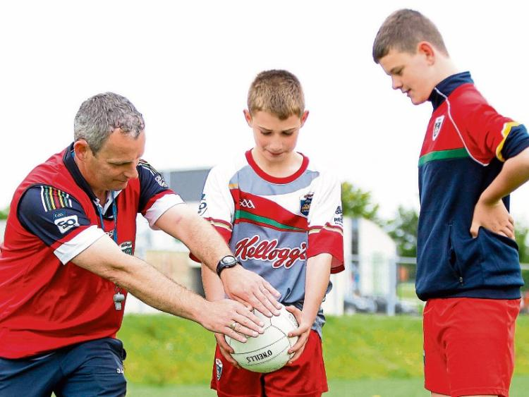 leitrim gaa seek coaches for 2016 kellogg u0026 39 s leitrim cul